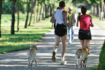 Friends running with dogs
