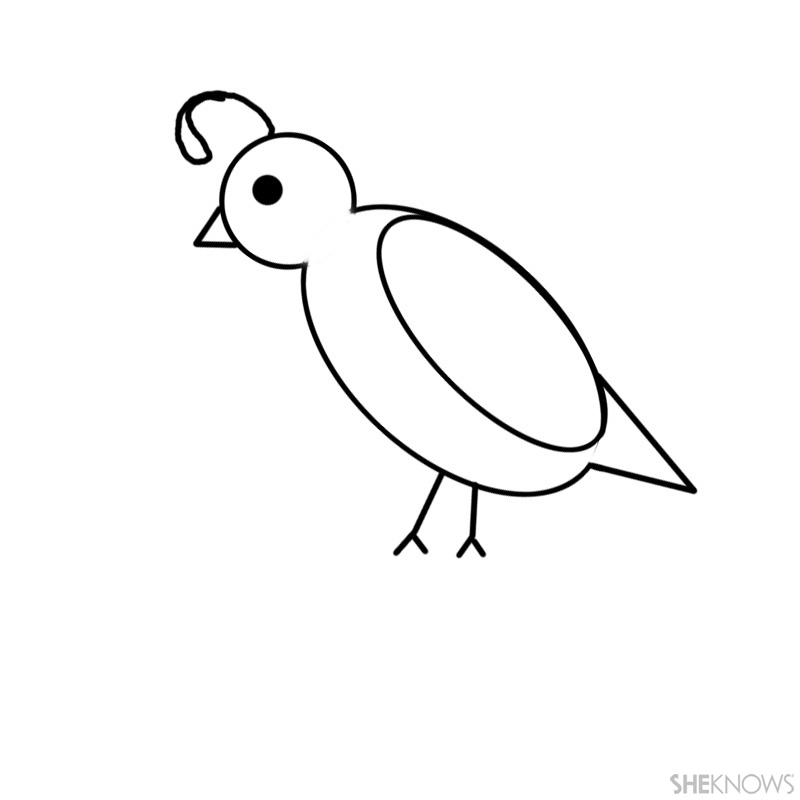 computer and printer quail template
