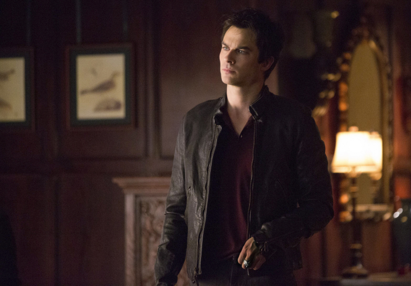 Can Damon and Stefan save Elena?