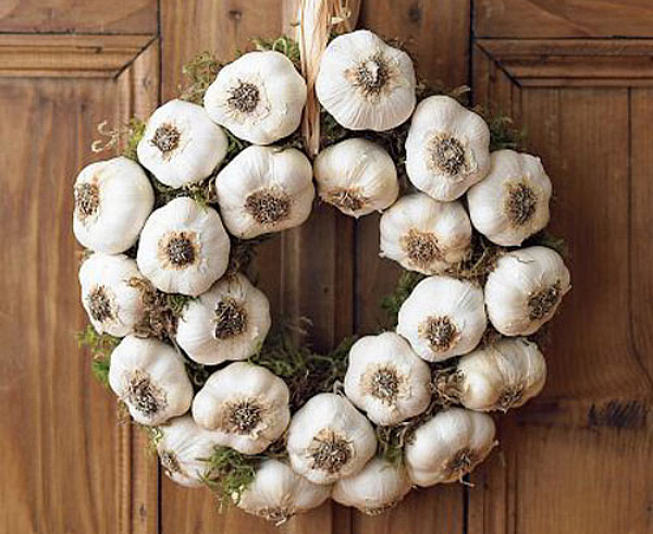 Garlic bulb wreath