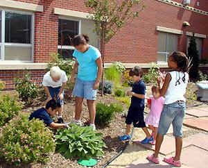 Start a school garden