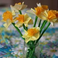 Cupcake liners daffodils