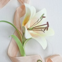 Watercolor paper lilly