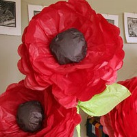 Giant poppies<