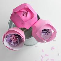 Paper lotus buds<