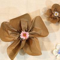 Paper wallflowers<