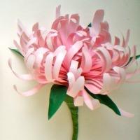 Paper chrysanthemums II