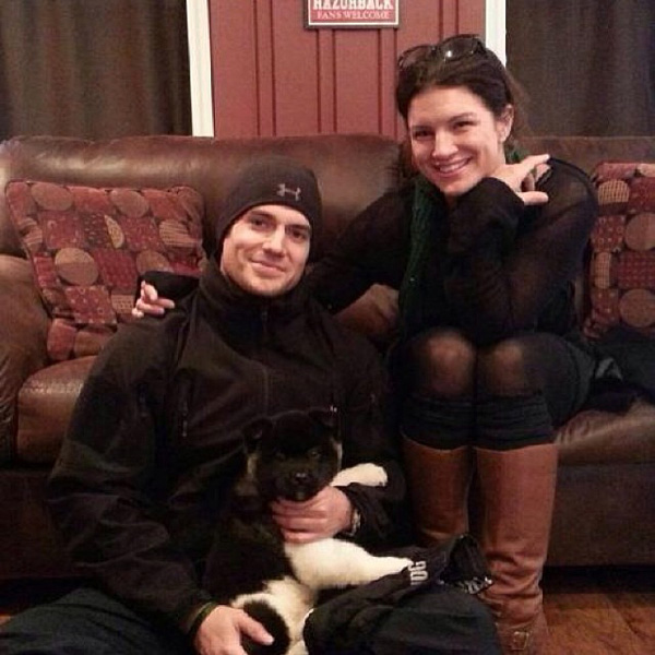 Henry Cavill and girlfriend Gina Carano buy a new Akita puppy