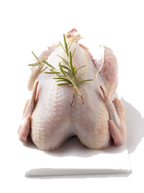 Raw chicken | Sheknows.com