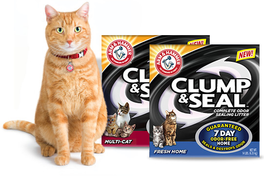 Clump and seal litter | Sheknows.com