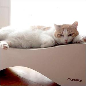 Vigo cat scratcher | Sheknows.com
