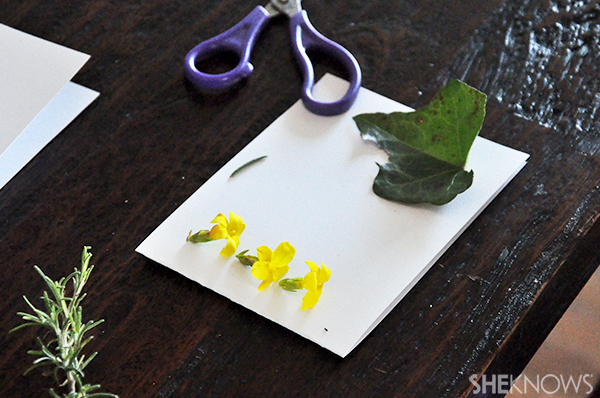 Greeting card with fresh flowers | Sheknows.com - card ready to flatten