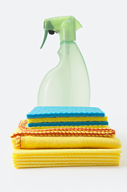 Spray bottle and wipes