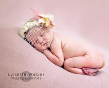 newborn photography prop: Veiled tiara