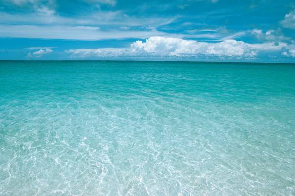 Plan the perfect honeymoon on Anguilla