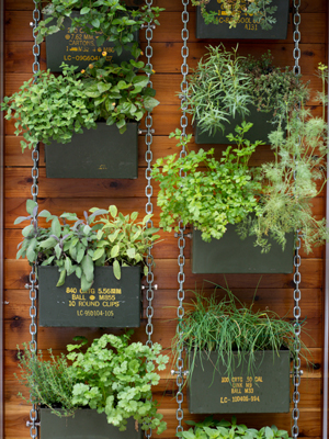 Vertical Herb Garden | Sheknows.com