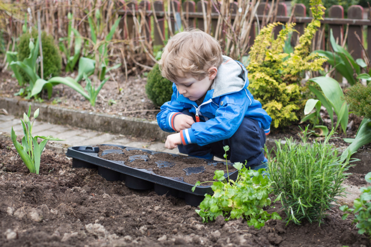 Boy planting seeds | Sheknows.com