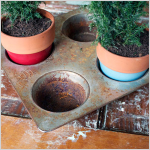 Muffin tin planter