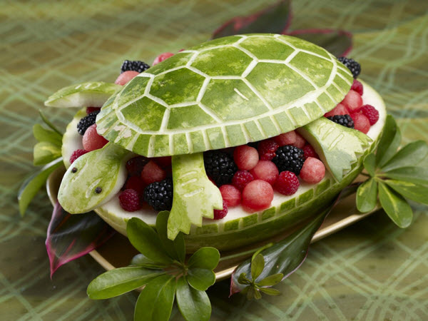 Tasty watermelon turtle