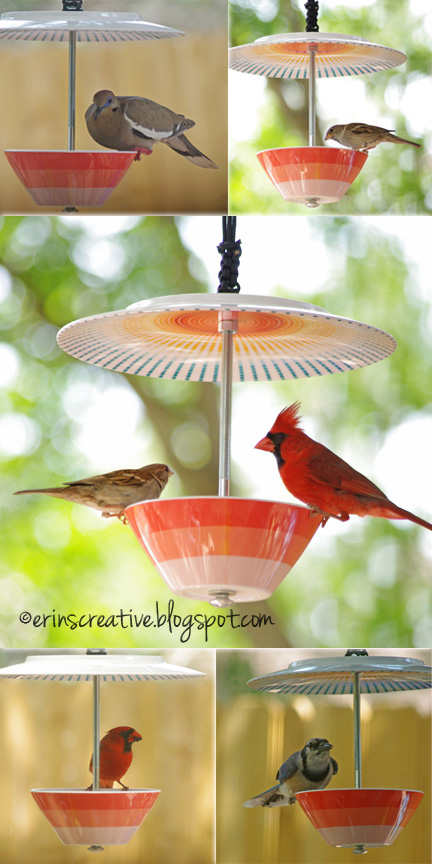 Upcycled Plate and bowl bird feeder