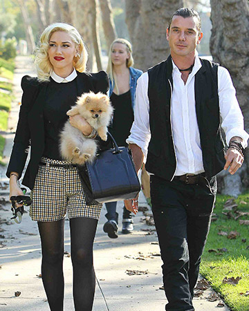 Gwen Stefani and Gavin Rossdale welcome baby Apollo