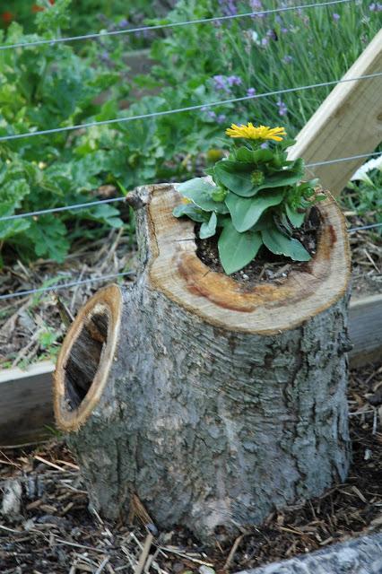 Tree stump flower pot planter | Sheknows.com