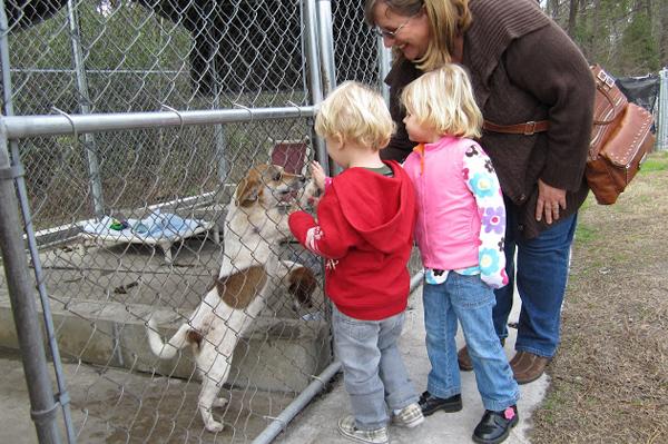 Animal rescue | Sheknows.com