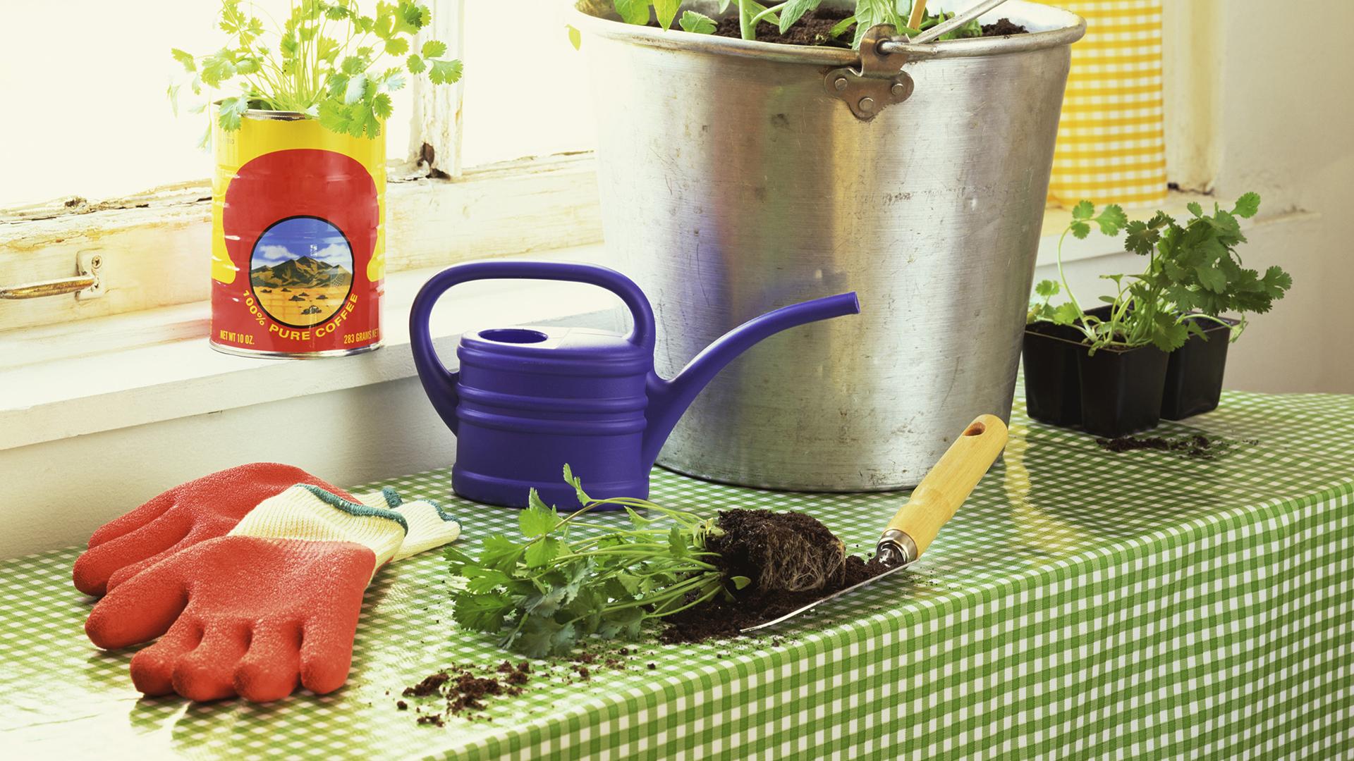 Gardening basket | Sheknows.com