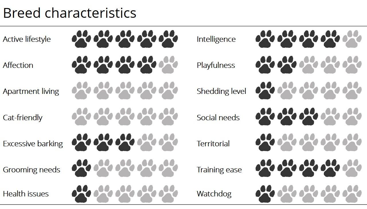 Bluetick characteristics