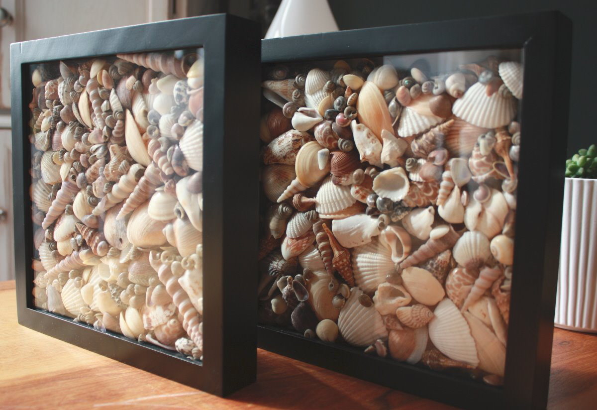 Seashell crafts for kids - Things to do with seashells ...