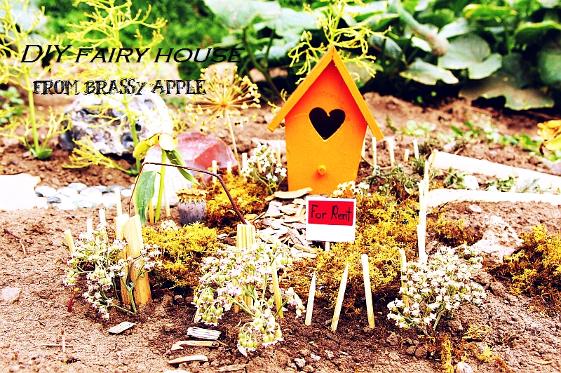 Fairy garden | Sheknows.com