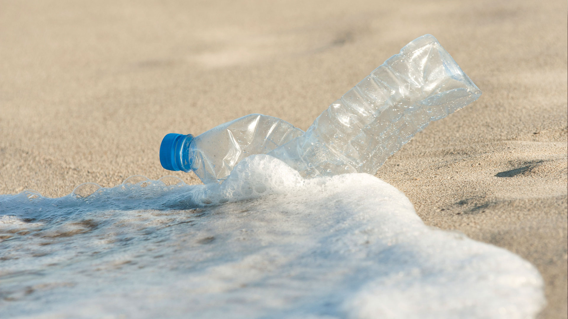 Empty plastic bottle on the beach