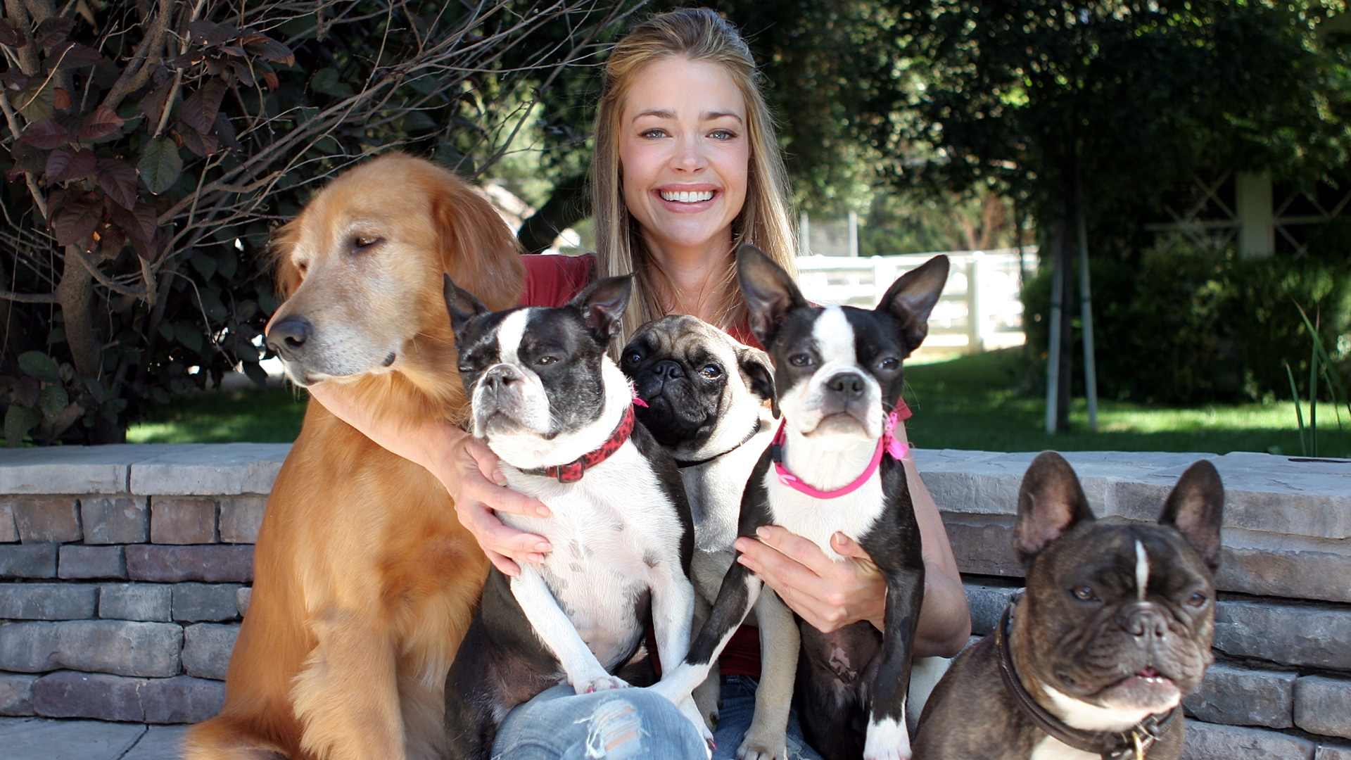 Denise Richards with her dogs