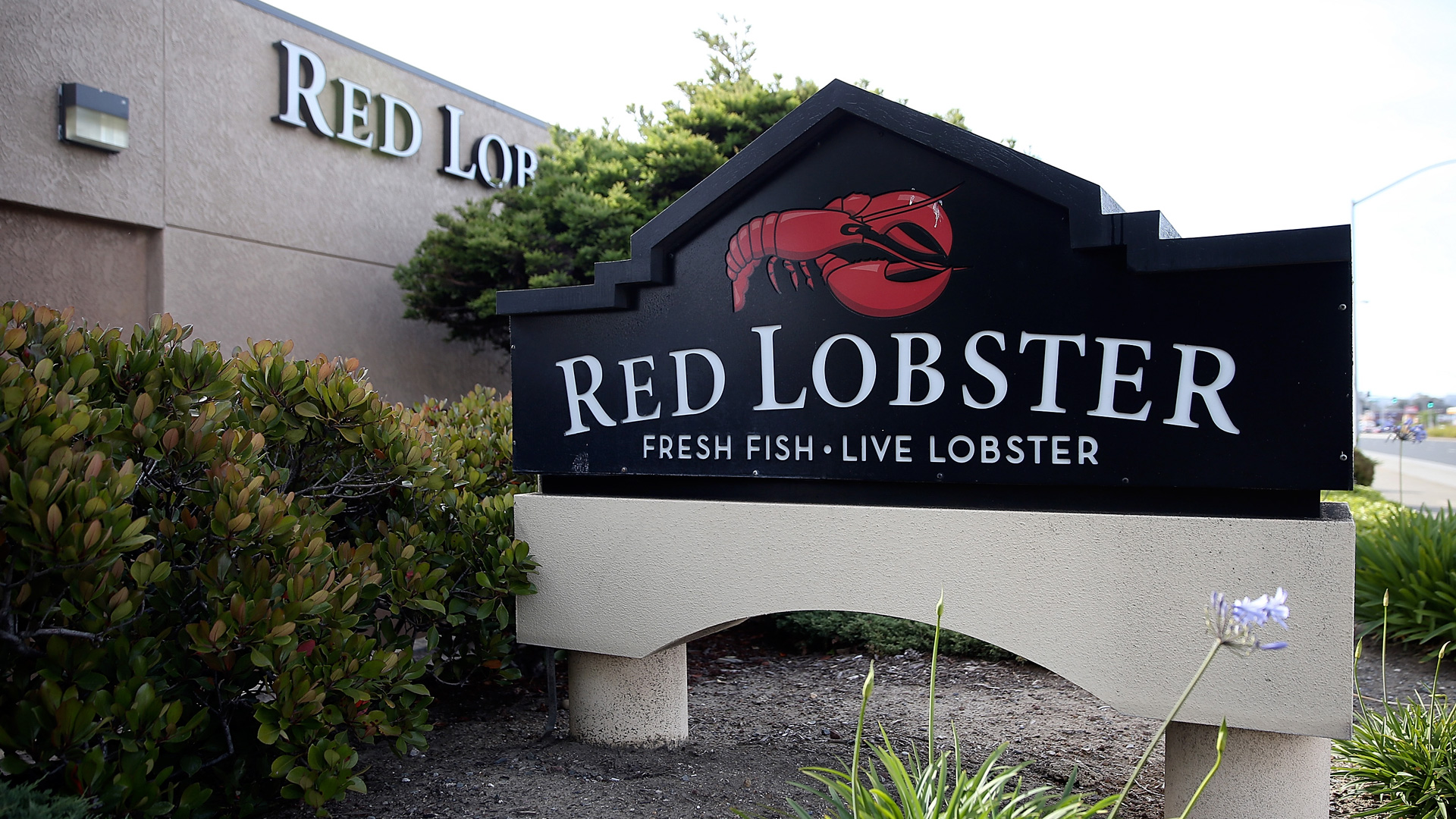 Top 10 things Red Lobster can do to save its crumbling empire