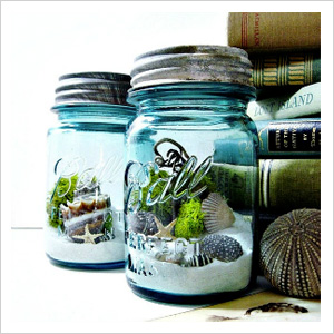 Stylish terrariums that double as decor