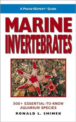 PocketExpert Guide to Marine Invertebrates | Sheknows.com