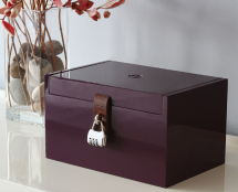 Sex toys must haves- box with a lock