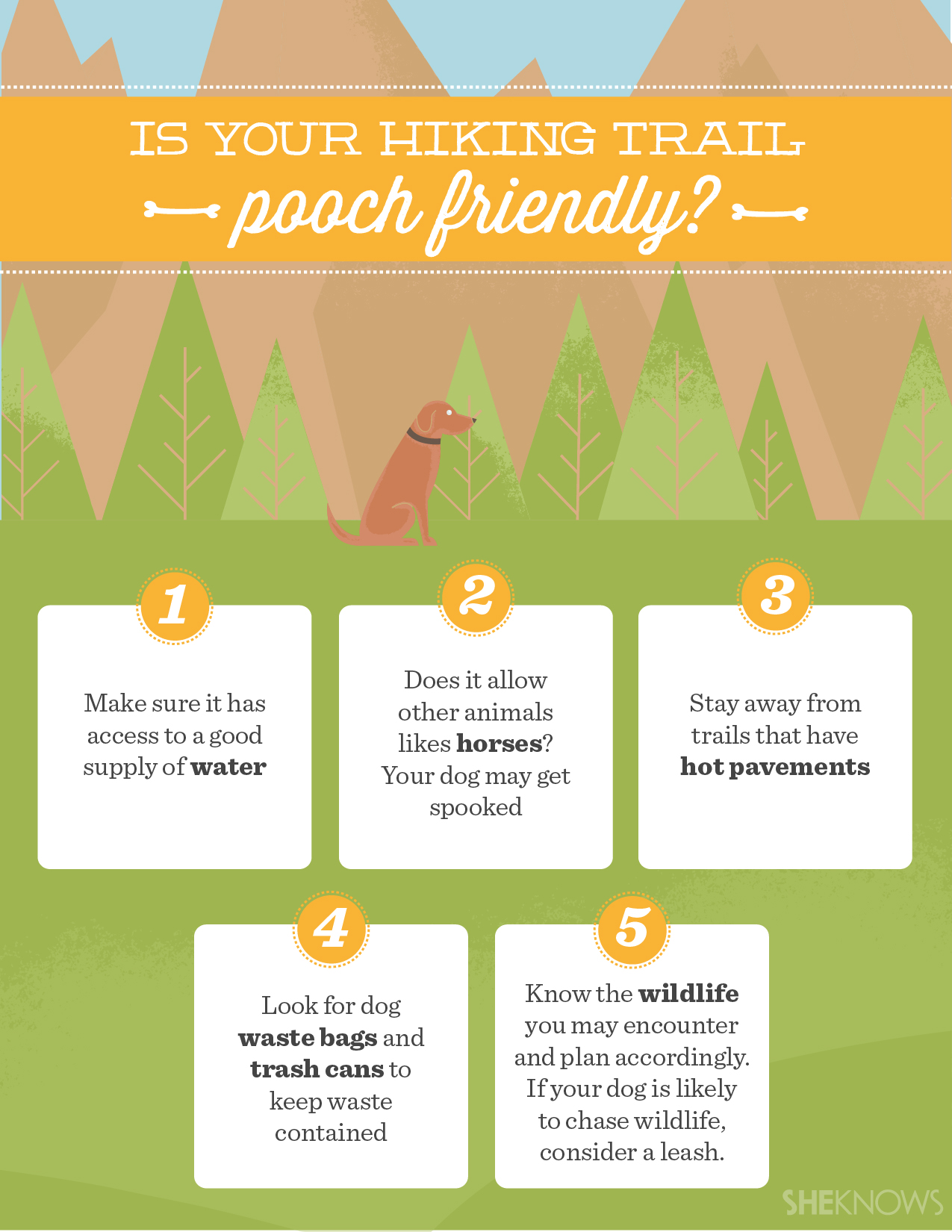 Is your trail pooch-friendly?