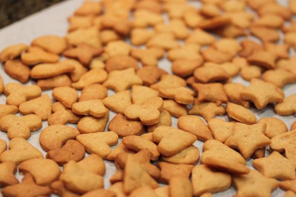 Whole wheat-and-cheddar mini crackers recipe