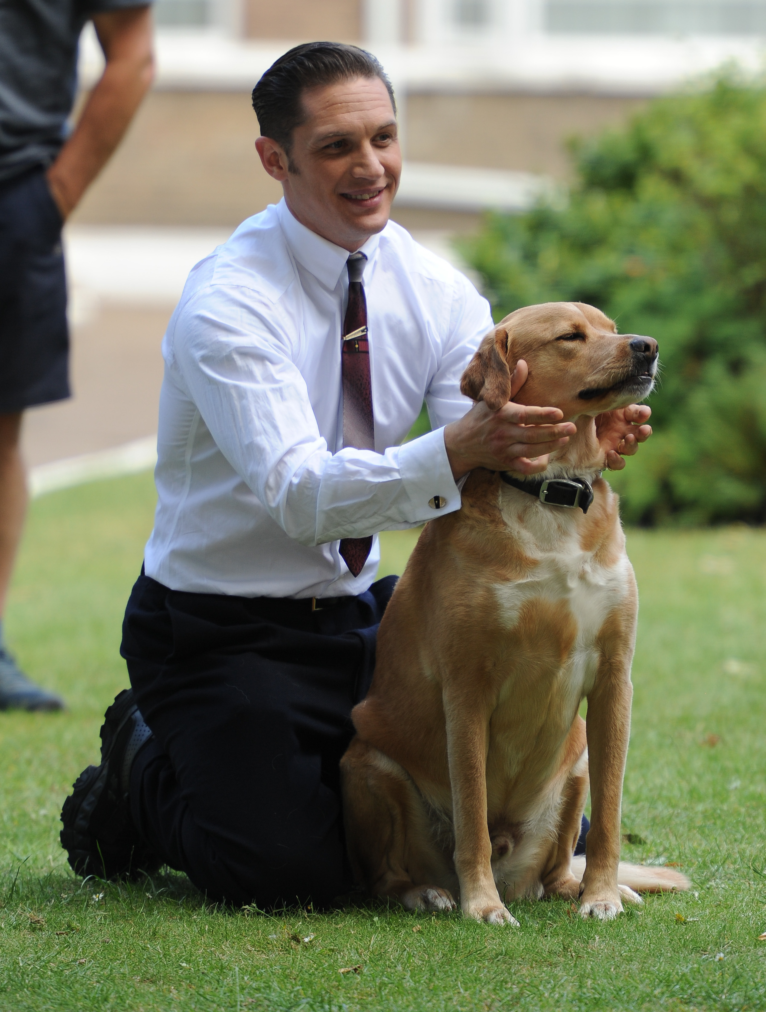 Tom Hardy and dog on the set of Legend