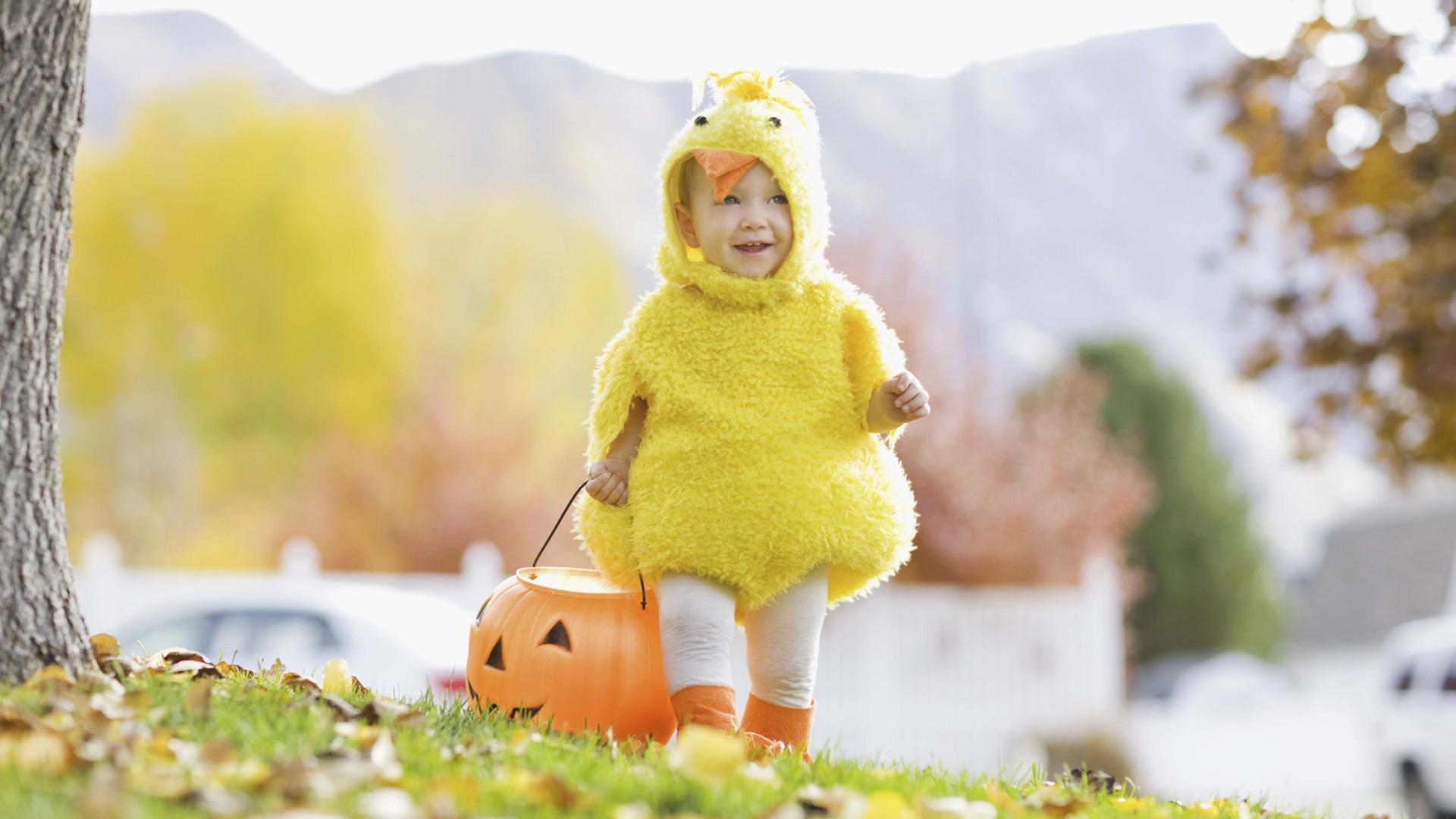 Toddler in halloween costume | PregnancyAndBaby.com