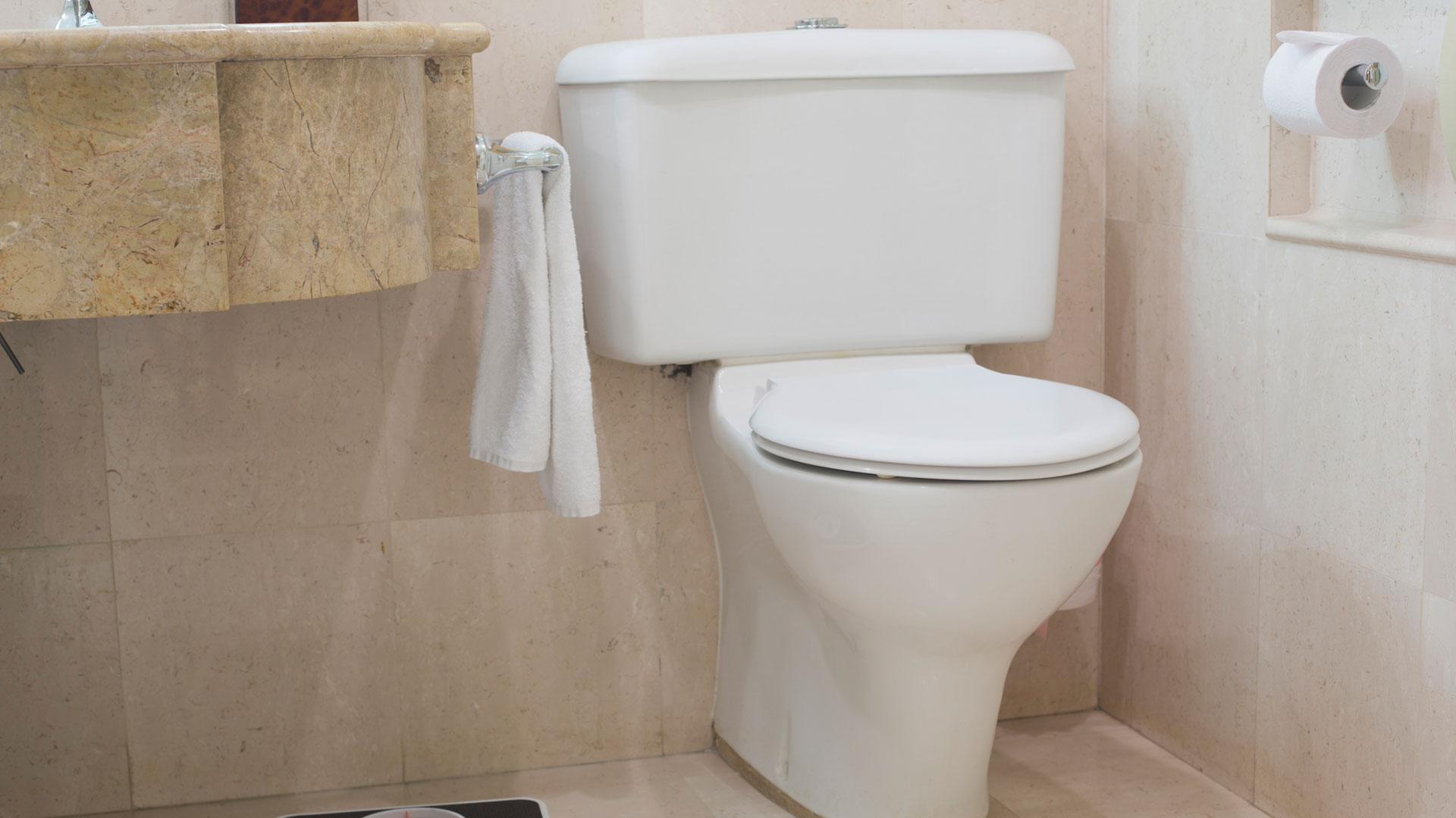 Toilet | PregnancyAndBaby.com