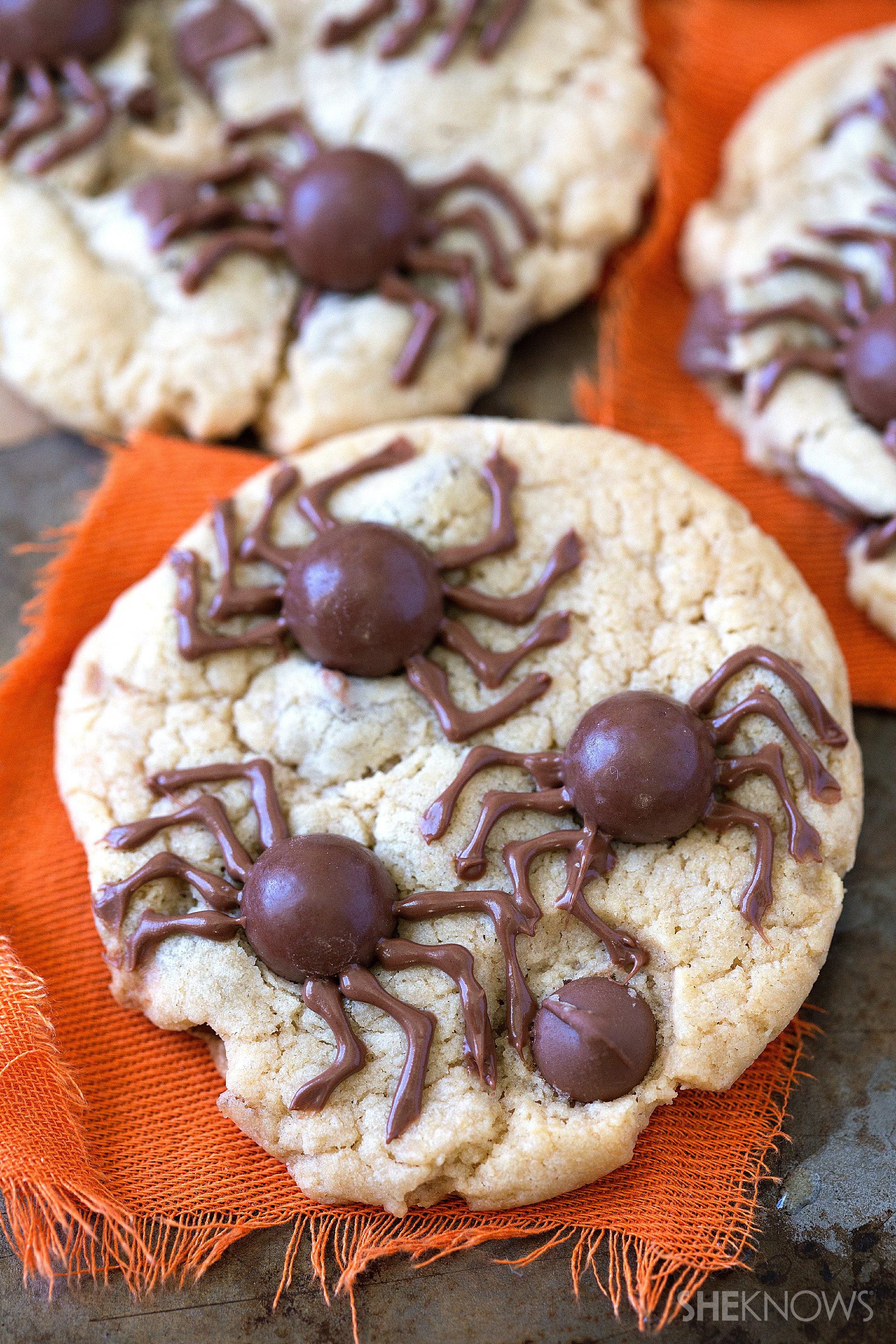 hope you enjoy these spooky spider cookies as much as my family did.