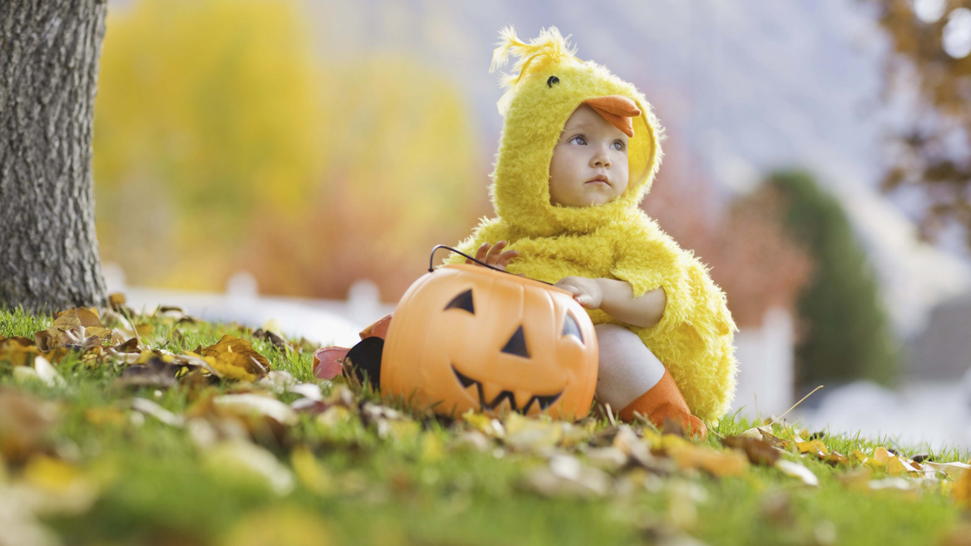 Halloween snack ideas for toddlers and babies