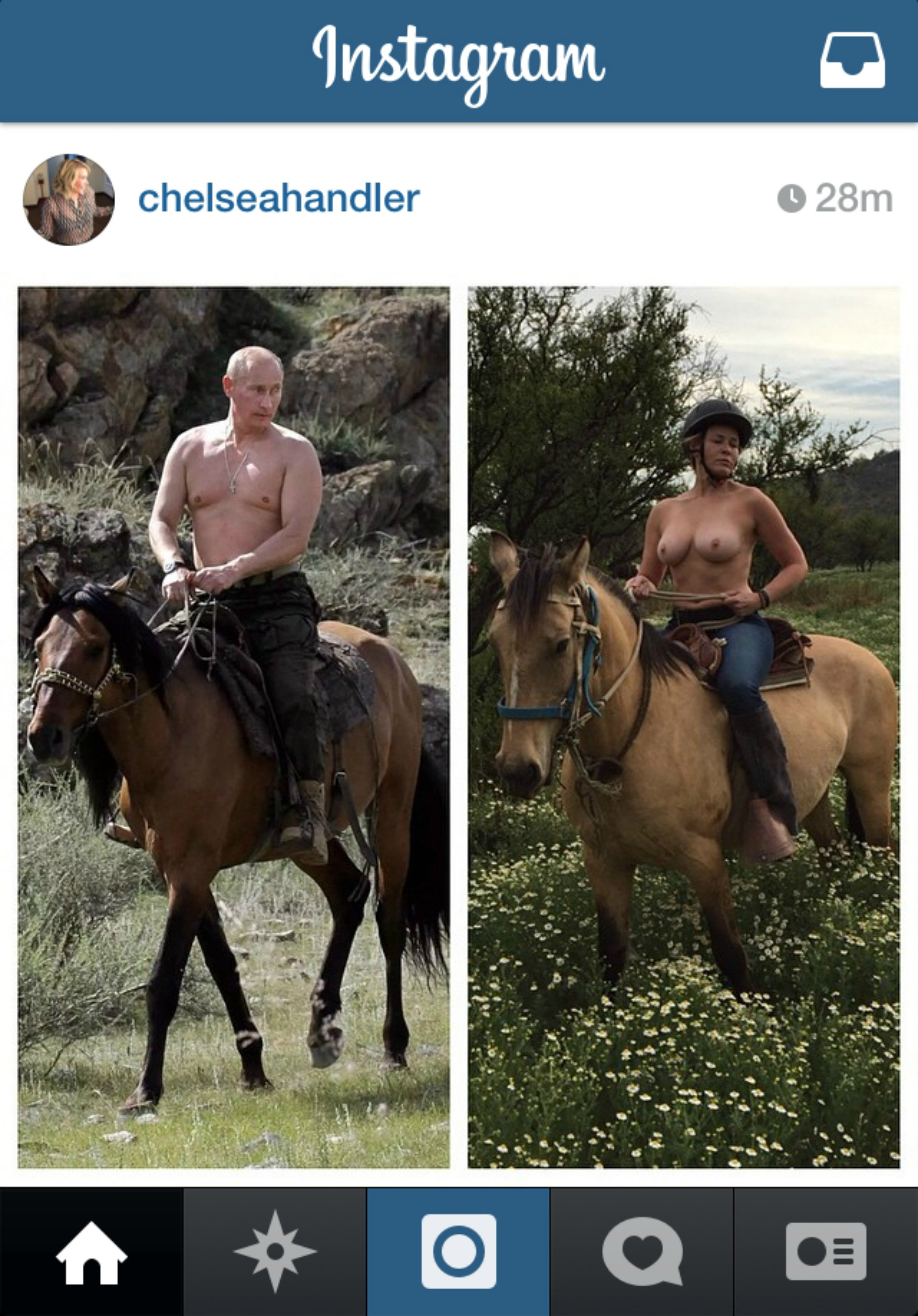 Putin Horse Obama