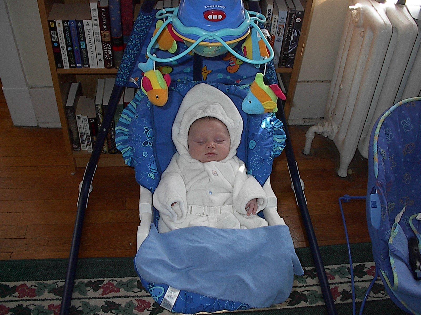 Pope baby
