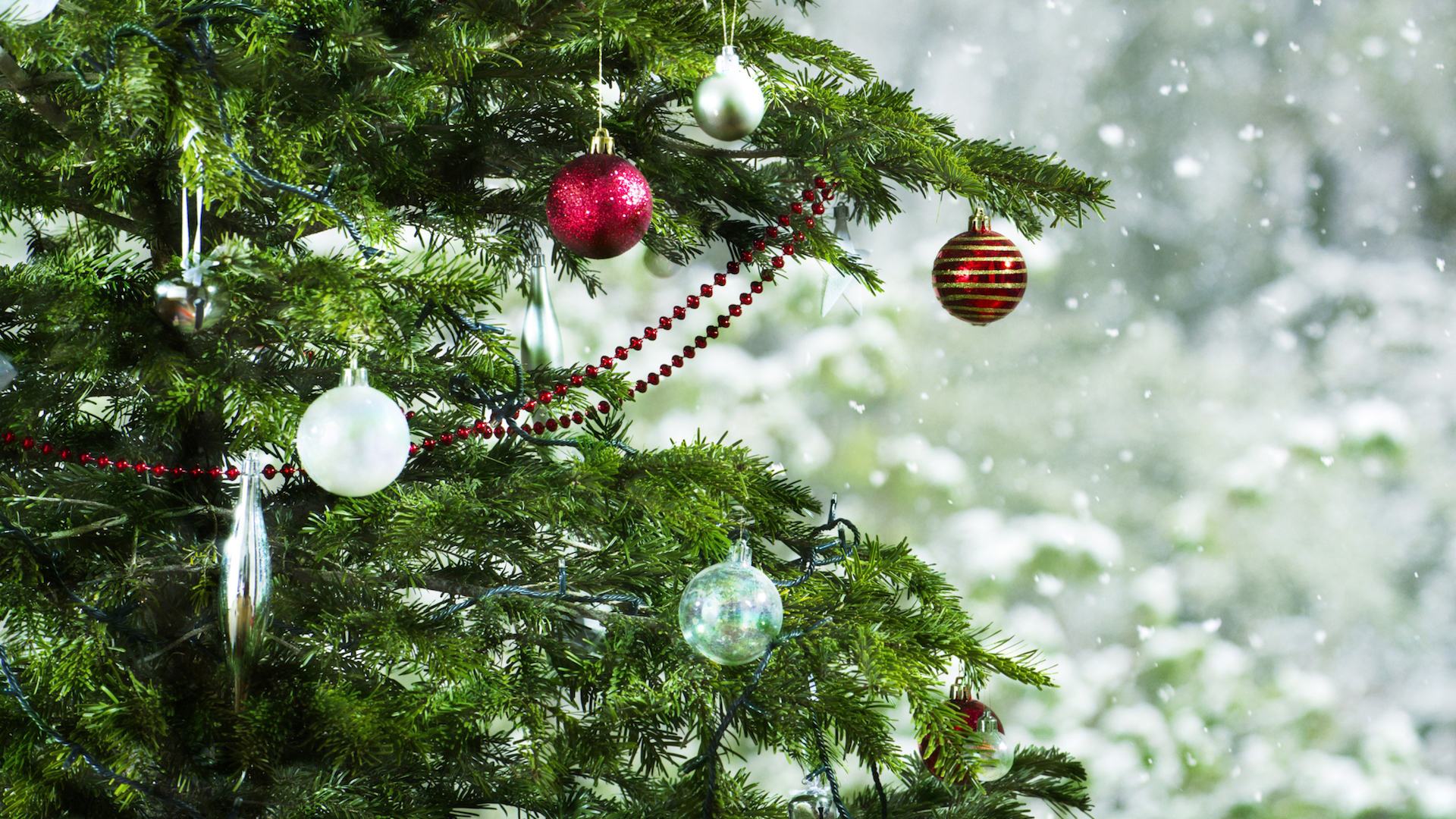 When To Take Down Your Christmas Tree, According To Tradition