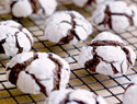50 Amazing cookie recipes for the holidays