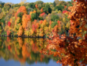 4 of the top fall festivals in Canada
