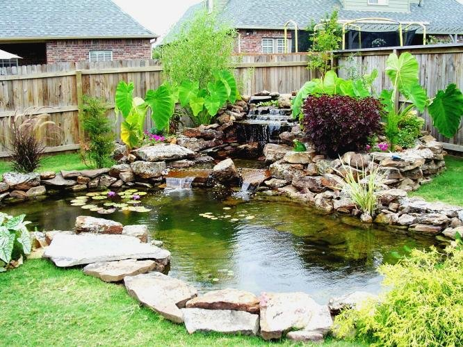 How to decorate your backyard for Koi pond design pictures